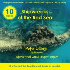 Shipwrecks of the Red Sea